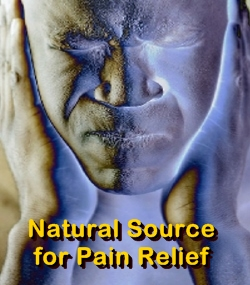 Ormus Minerals Advanced Natural Pain Relief & Nerve Support